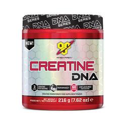 Cr�atine DNA