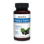 Baies de Maqui : Puissant antioxydant
