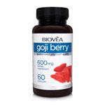 Baies de Goji : Riche en antioxydants, stimule le système immunitaire