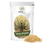 Muira Puama : Muiria Puama en poudre