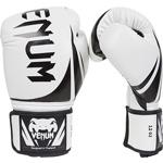 Challenger 2.0 Boxing WH : Gants de boxe