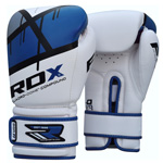 Quadro Dome Blue : Gants de boxe RDX