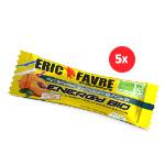 Energy Stick Bio Endurance : Shot énergétique