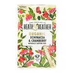 Organic Echinacea : Infusion à l'échinacée bio