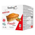 Plumcake : Gâteau protéiné