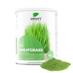 Wheatgrass : Herbe de blé bio en poudre