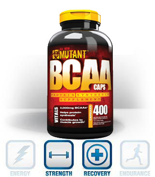 BCAA - Acides Amines