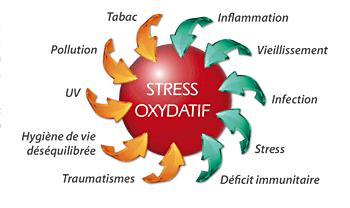 Complexe antioxydant