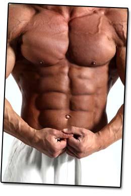 Weight gainer - Muskelvolumen Series
